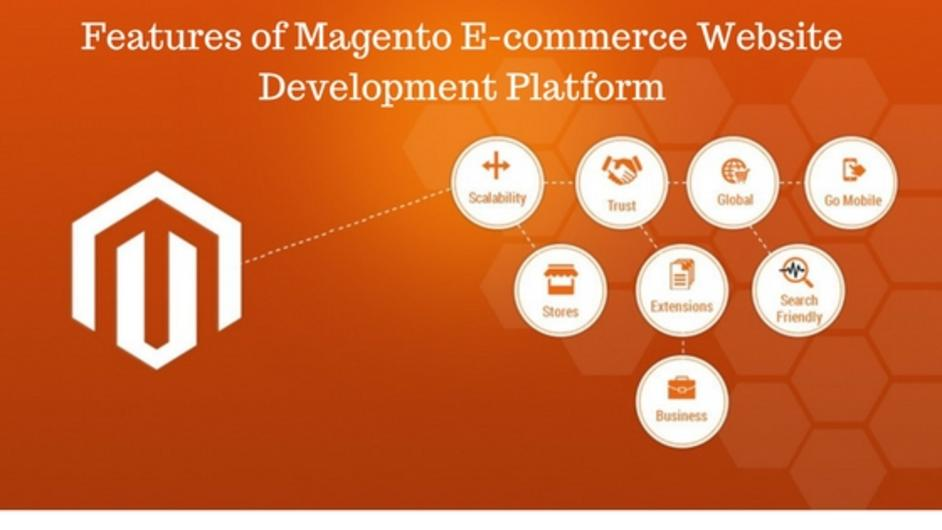The Magneto Developer Services That Can Take Your Business to the Next Level