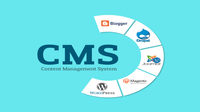 The Most Popular CMSs for E-Commerce, SEO, and the Bloggers