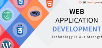 Web Application Development Facts