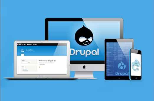 drupal development services india